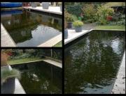 zwemvijver op maat