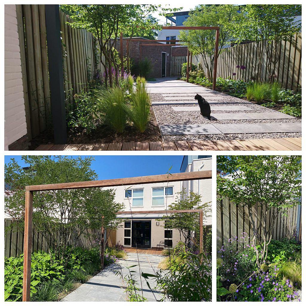 natuurlijke eigentijdse tuin